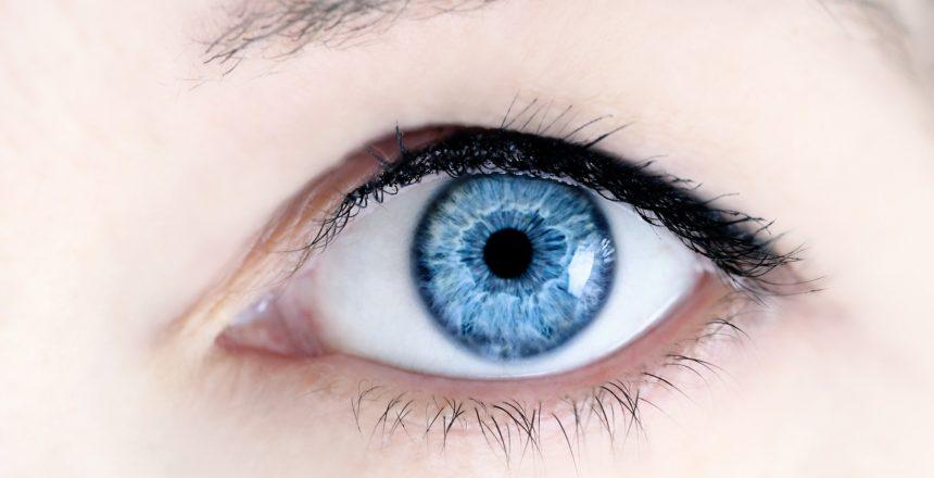 Eye Doctor in Daytona Beach
